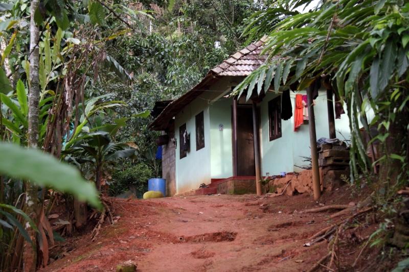 Ecotones, Munnar, Village Walk